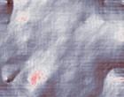 pfadfinder kurz lederhose
